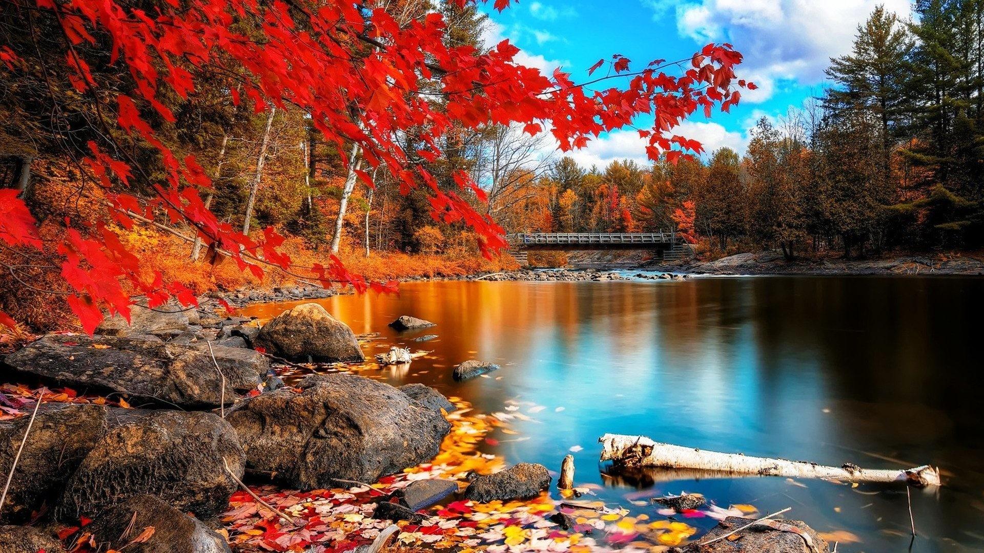 fall desktop backgrounds